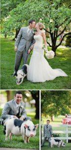 Pig Ring Bearer for Wedding