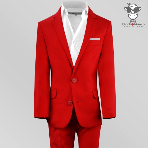 Boys red suit, Boys Suits, Boys Slim Fit Red Suit
